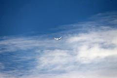 surfing the sky (submarine_bells) Tags: augc gliding stonefield glider soaring sailplane motorfalke