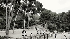 A walk to remember (AnaAyana) Tags: guell park walk people blackandwhite bw trees