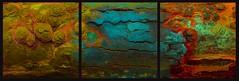 20160816 Woutvanmullem Drieluik Hout Etalage 5-2 (Wout van Mullem) Tags: kunst de etalage zuidhorn wout van mullem kleurrijk boomschors roest rust drieluik tryptich triptiek