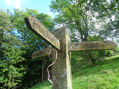 Where now? near Grindon, Staffordshire (eamoncurry123) Tags: public footpath publicfootpath hillsdale grindon wetton staffordshire signpost