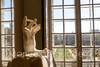 #mano #hand #ventana #window #museorodín #muséerodin #2014 #parís #paris #francia #france #ciudad #city #viajar #travel #viaje #trip #paisaje #landscape #photography #photographer #sonyalpha #sonyalpha350 #sonya350 #alpha350 (Manuela Aguadero PHOTOGRAPHY) Tags: sonyalpha350 ciudad 2014 paisaje museorodín travel landscape viaje viajar photography city hand paris muséerodin sonya350 francia window sonyalpha photographer france mano trip alpha350 parís ventana