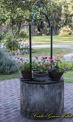 Aljibe (Carlos Gauna Vidal) Tags: aljibe flores macetas paisaje