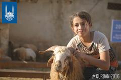 2016_Syria_Qurbani_59_L.jpg