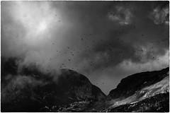 Raggio di sole | Ray of sunshine (Roberto Spagnoli) Tags: montagna mountain nuvole clouds biancoenero blackandwhite paesaggio landscape corvo crow montebaldo storm explore