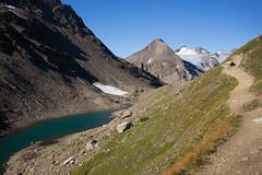 visit @ Passo del Corno (Toni_V) Tags: m2401227 rangefinder digitalrangefinder messsucher leica leicam mp type240 typ240 hiking wanderung randonne escursione alps alpen cornopass nufenenpass valbedretto passodelcorno ticino tessin switzerland schweiz suisse svizzera svizra europe bttelmatthorn trail wanderweg sentiero landscape mountains mountainlake bergsee toniv 2016 160906 35mm 35lux summiluxm