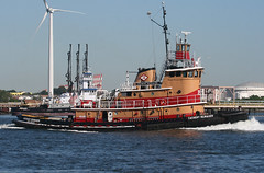 ZACHERY REINAUER in New York, USA. August, 2016 (Tom Turner - SeaTeamImages / AirTeamImages) Tags: vessel tug tugboatr reinauer zacheryreinauer kvk killvankull water waterway channel spot spotting tomturner statenisland newyork nyc bigapple usa unitedstates marine maritime pony port harbor harbour transport transportation