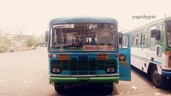 YAWATMAL - AHERI @ GONDPIPARI (yogeshyp) Tags: msrtc manavvikasbus st aheri yavatmal