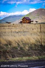 OFF GRID PHOENIX ARIZONA  #LOVE OFF #GRID #nature #peace #GrandCanyon #trail #Arizona #photography #Nikon #D90 #nature #travel #scenic #DSLR #Arizona #Phoenix (Phoenix1914) Tags: love grid nature peace grandcanyon trail arizona photography nikon d90 travel scenic dslr phoenix
