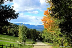 Early Autumn (moniquef123) Tags: autumn fall fallfoliage countryside country road vermont nature landscape green blue orange leaves trees sky sunny weather weatherphotography