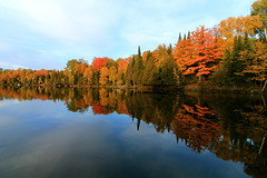 Standing Still (Cole Chase Photography) Tags: autumn lake fall wisconsin canon reflections colorful september northwoods t3i northernwisconsin boulderjunction thenorthwoods