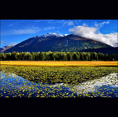 - (klaus53) Tags: autumn mountain lake reflection alaska landscape nikon kenaipeninsula sewardhwy blinkagain