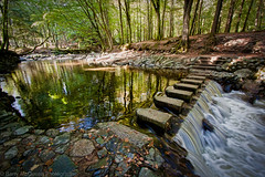 Stepping Stones - Tollymore (bazmcq) Tags: park county uk ireland forest river newcastle down northernireland steppingstones northern forestpark ulster countydown tollymore tollymoreforestpark northernirelandphotography barrymcqueen yahoo:yourpictures=waterv2 yahoo:yourpictures=yourbestphotoof2012