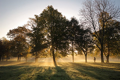 A walk in the park.... (Digital Diary........) Tags: park mist fog backlight walker getty sthelens contrejour backlighting gettyimages suttonpark merseyside goodlight allaboutthelight
