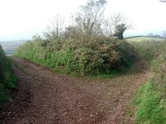 Junction of Green Lanes above Ringmore South Devon (Bridgemarker Tim) Tags: devon paths caminhos greenlanes shaldon ringmore stokeinteignhead