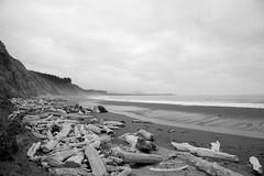 Beach at Cape Blanco (oyam.) Tags: blackandwhite bw nature oregon unitedstates 101 driftwood capeblanco pacificcoasthighway canonef24105mmf4lis imagetype photospecs tv