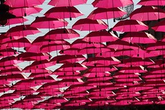 pink umbrellas - ODC decoration (kosta le rouge) Tags: street decorations sofia bulgaria umbrellas bulgarie odc parapluies