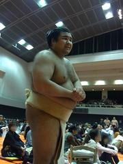 R0035565 (kajikaz) Tags: hiroshima sumo
