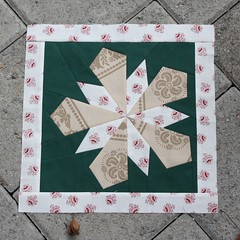 A star for Leona's Chrismas Themed Quilt (by niveas) Tags:
