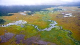 Alaska Luxury Fly-Out Fishing Lodge13