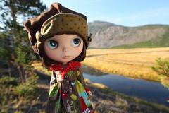 Watching Elk with Molly (jessi.bryan) Tags: trip vacation doll yellowstonenationalpark yellowstone blythe ebl customblythe fancypansy wingsinflight vainilladolly vainilladollyblythe sugarmaghat