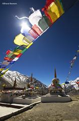 Kunzum Pass (4590 m), Himachal Pradesh (Bharat Baswani) Tags: mountain la prayer pass flags himachal bharat pradesh kumzum kunzom baswani kunjam