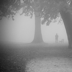 fog (Welcu) Tags: park mist tree fog blackwhite day wroclaw