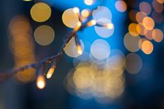Fairy Lights (Bephep2010) Tags: blue light schweiz switzerland evening abend licht bokeh sony blau fairylights solothurn lichterkette nex 2013 stalden nex6 sel50f18
