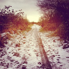 Day 3 Walk 3 #scotland #winter (julie gibbons) Tags: square toaster squareformat tiretracks snowypath countrysidepath scottishwinter scottishcountryside iphoneography instagramapp uploaded:by=instagram