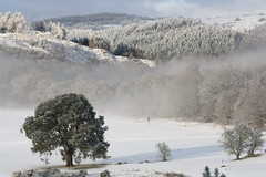 The Royal Dunkeld & Birnam Golf Course, Dunkeld, Scotland (Gill G 01) Tags: winter snow landscape scotland perthshire dunkeld lphills