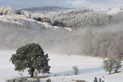 The Royal Dunkeld & Birnam Golf Course, Dunkeld, Scotland (Gill G 01) Tags: winter snow landscape scotland perthshire dunkeld lphills