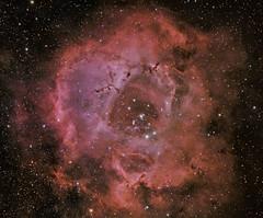 Rosette Nebula HaRGB Collaboration 15 January 2013 (BudgetAstro) Tags: nikond70 astrophotography astronomy dss davewilliams dso ed80 ngc2244 rosettenebula deepskystacker deepskyobject ngc2239 Astrometrydotnet:status=solved Astrometrydotnet:version=14400 caldwell49 Astrometrydotnet:id=alpha20130185184109