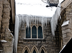 Peace Tower Church Roof Ice Detail - Ottawa 01 13 (Mikey G Ottawa) Tags: street city winter ontario canada ice architecture frozen ottawa freeze mikeygottawa peacetowerchurch