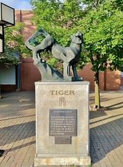 Tiger (ArtFan70) Tags: china sculpture usa chicago art animal statue america illinois chinatown unitedstates tiger il bigcat xiamen zodiac chinesezodiac artdepartment xmu yearofthetiger xiamenuniversity armoursquare chinatownsquareplaza artdepartmentofxiamenuniversity