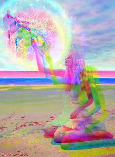 LARRY CARLSON, Wings of Sun, digital photography, 2013.