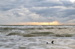 shore (Fotogezwitscher) Tags: shore sea water sky wave surf clouds storm stormy wild rough dawn sunset godrays