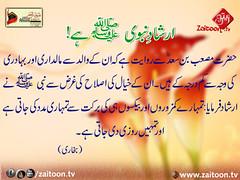 17-3-16) zuyufur rehman (zaitoon.tv) Tags: saw message prophet mohammad islamic quran namaz hadees ahadees