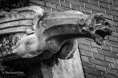 Gargoyle from chatedral in Osijek #5 (v.Haramustek) Tags: gargoyle osijek cathedral curch statue sculpture bw evil guarding monster stone art zoom arhitecture kreative scaring blackandwhite monochrome texture surreal croatia slavonija photoborder