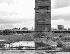 Former Smokestack (d_t_vos) Tags: smokestack chimneyshaft flue industry industrial chimney old oldfashioned grass rain puddle highway viaduct span bridge rest remainder remains leftover tower church martini groningen flat apartmentbuilding sky skuline clouds martinitoren ollegrieze trees suikerunie suikerfabriek ringweg sugarfactory factory 2013 dickvos dtvos