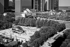 Millennium Park, Chicago. July, 2016. (Guillermo Esteves) Tags: chicago illinois chicagoloop cloudgate fujifilmxt1 blackandwhite unitedstates us