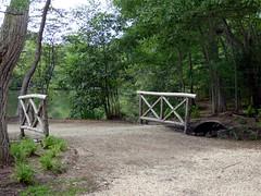Bayard Cutting Fields Arboretum (32) (pensivelaw1) Tags: suffolkcounty newyorkstate longisland bayardcuttingarboretumstatepark
