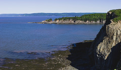 Cape Enrage (BrianWalsh12) Tags: landscape nature water exploremore explore naturephotography seaweed capeenrage beach ocean tree forest adventure trees green bay landscapephotography newbrunswick sea