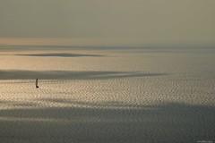 Riflessi (David Burrini) Tags: riflessi nikon light sunset sun sea landscape grecia greek lefkada leucade