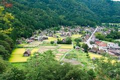 (Wunkai) Tags: nogun gifuken japan shirakawa  paddy    overlook  ogimachi  thatchedroof