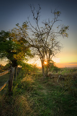 End of Day (MixPix ) Tags: summer sunset fields landscape grass tree sky hyperfocal hdr wideangle england