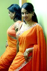 South actress Madhu Chanda Photos Set-1-Hot In Saree (2)