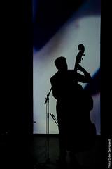 20_PascalPeroteau_4674 (darry@darryphotos.com) Tags: charlesbaudelaire d700 deuxsevres lesartsenboule lesfleursdumal melle melle79 nikon pascalperoteau concert metullum musiciens musique scene show spectacle