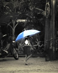 Blue Umbrella (michel1276) Tags: thailand rain regen schirm umbrella