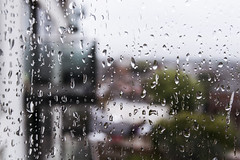 Rain (APpertureBlog) Tags: rain grey weather