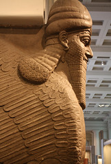 Lamassu (richardr) Tags: old uk greatbritain england sculpture london english heritage history sphinx museum architecture geotagged ancient europe european unitedkingdom britain gates historic bloomsbury british britishmuseum mythology europeanunion myth lamassu assyrian ashurnasirpal nimrud shedu balawatgate geo:lat=5151921316962022 geo:lon=012688953505710288