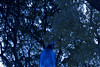"Bluez 11 • <a style=""font-size:0.8em;"" href=""http://www.flickr.com/photos/89606208@N07/8172038862/"" target=""_blank"">View on Flickr</a>"